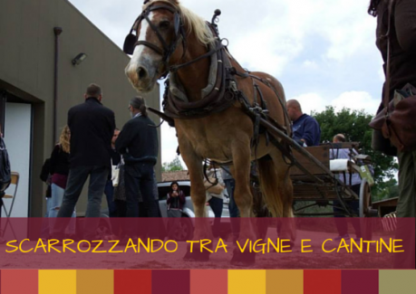 carrozza a cavallo